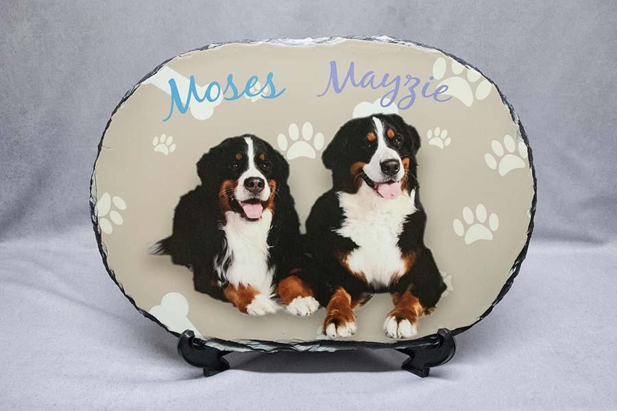 Dog Photo Slate